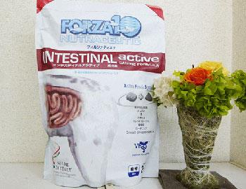 Intestinal Active